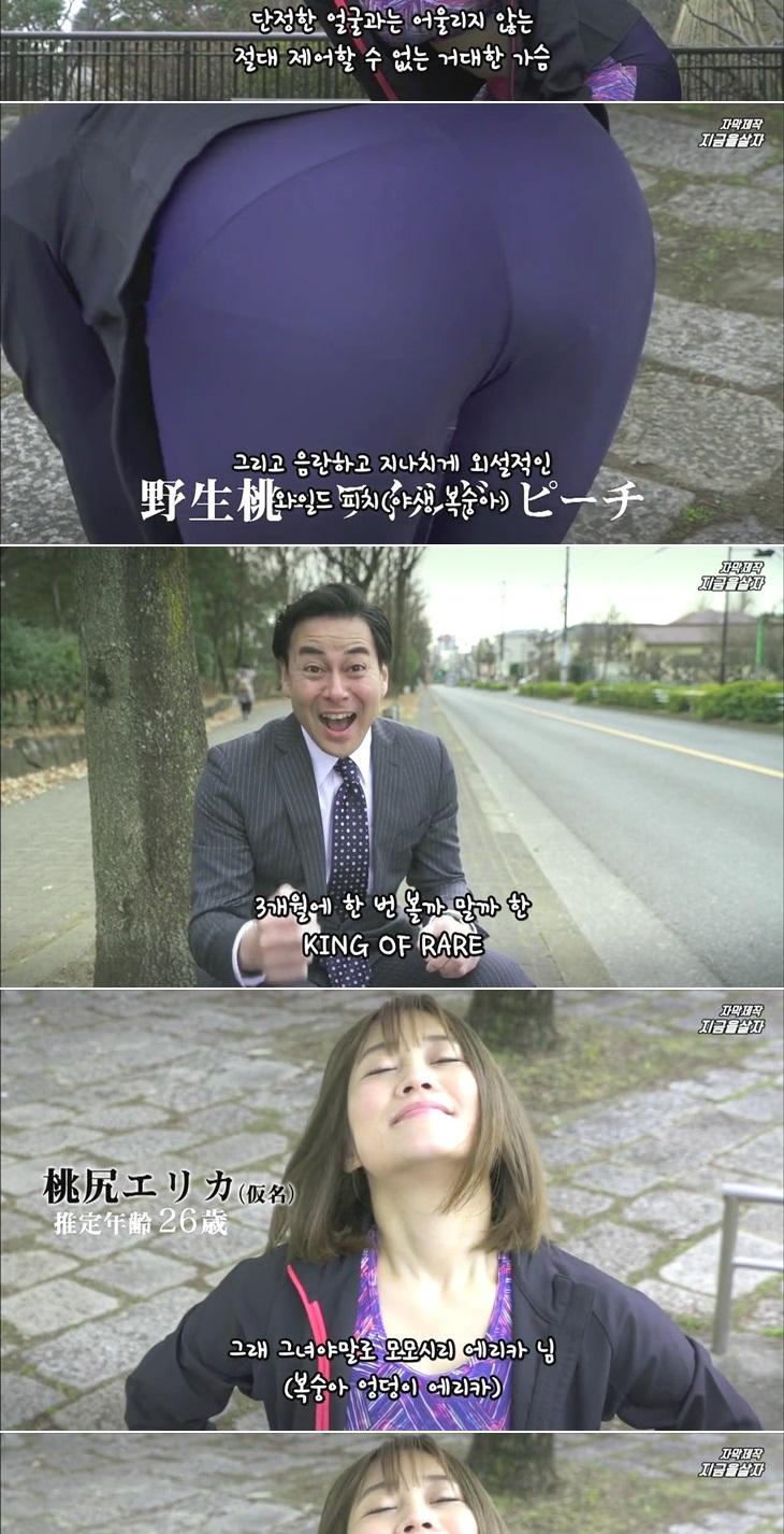열도의 신작 드라마