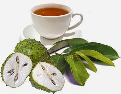 obat tradisional, obat herbal, kecantikan dan kesehatan, kesehatan kandungan,