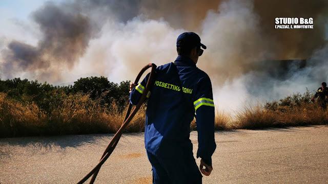 Πυρκαγιά κινητοποίησε 20 πυροσβέστες και 8 οχήματα στην Ερμιονίδα