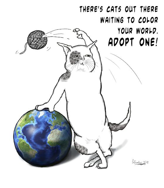It's a world cat