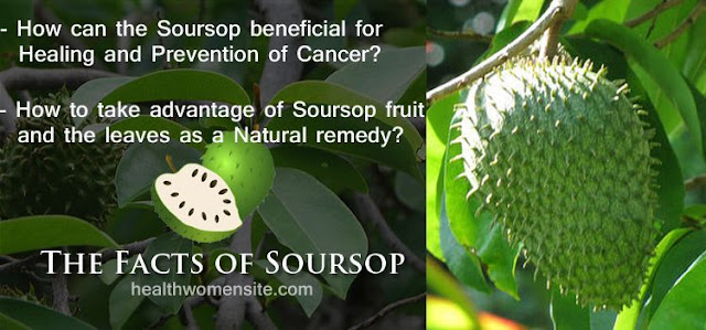 The Fact Of Soursop Benefits For Cancer And Diabetes