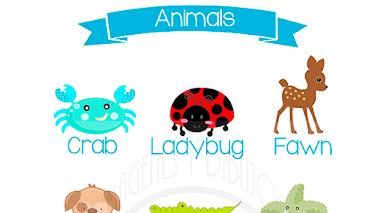 Animales en inglés 🐹