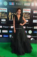 Esha Gupta in a Deep Neck Sleeveless Dark Green Gown at IIFA Utsavam Awards 2017     06.JPG