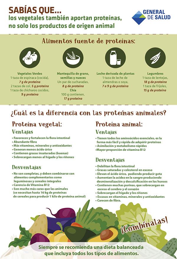 ¿SABÍAS QUE... LOS VEGETALES TAMBIÉN APORTAN PROTEÍNAS, NO SOLO LOS PRODUCTOS DE ORIGEN ANIMAL?