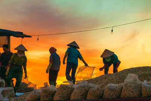 Chùm ảnh đẹp về bãi biển Đồng Châu Thái Bình Phần 1-8