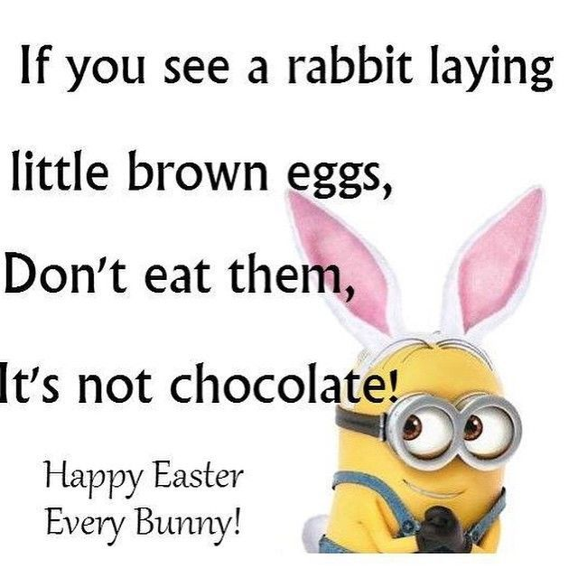 Image of: Birthday Below You Can Find The Latest And Best Funny Easter Jokes With Bunny Easter Memes To Share On Social Media Websites Like Facebook Twitter Instagram Happy Easter 2018 When Is Easter Sunday Eggs Images Baskets Hilarious Happy Easter Jokes Funny Memes Riddles Oneliners