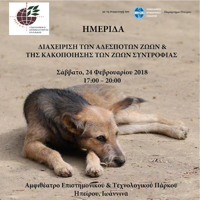 Γιάννενα: Ημερίδα με θέμα «Διαχείριση των αδέσποτων ζώων & της κακοποίησης των ζώων συντροφιάς»