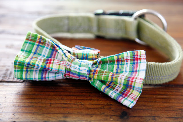 DIY plaid dog bow tie with Velcro collar attachment