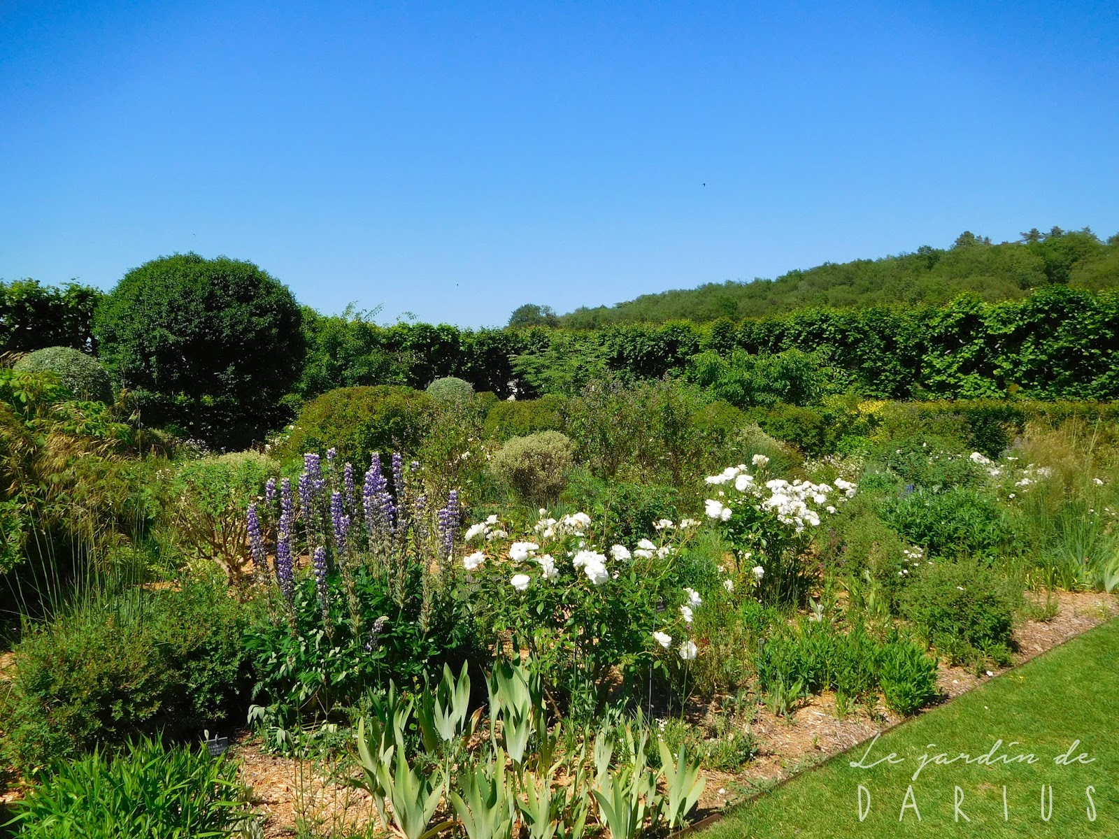 Le jardin de darius weekend en touraine 3 3 for Le jardin 2 0