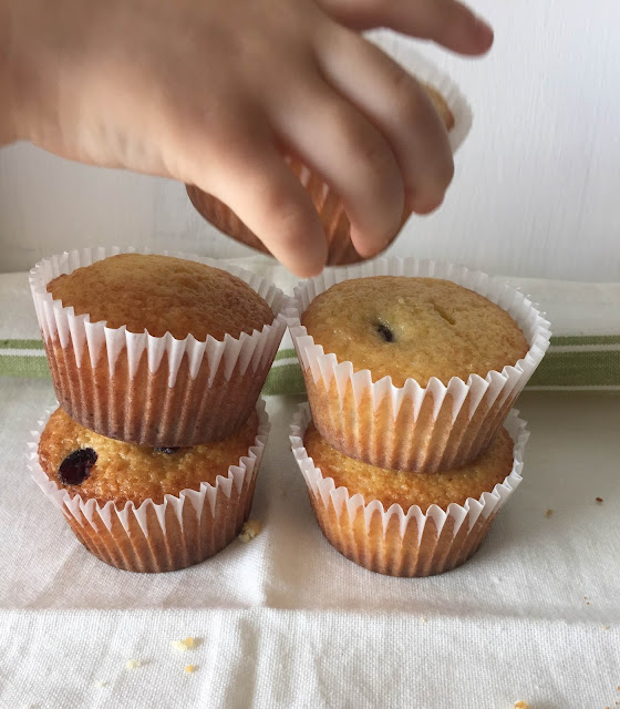 recetas-cupcakes-maiz-arandanos