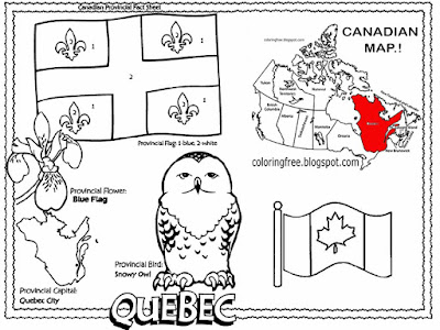 Blue flag flower and snowy owl winter wildlife creature printable City of Quebec coloring book pages