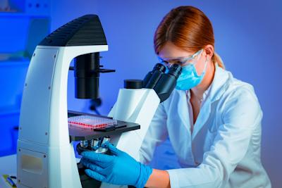√ Apa Itu Stem Cell dan Fungsinya ⭐ Pengertian Stem Cell | WA 081327570786