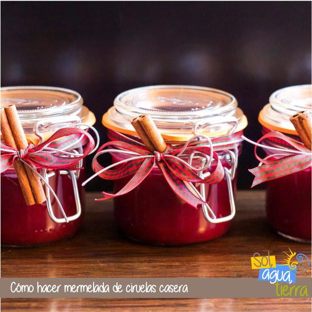 Receta para preparar mermelada de ciruelas casera
