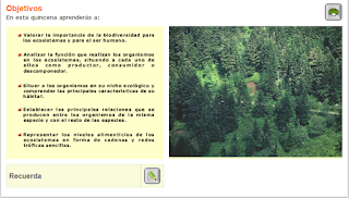 http://recursostic.educacion.es/secundaria/edad/2esobiologia/2quincena11/index_2quincena11.htm