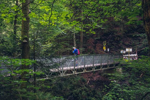 Wamberg, Eckbauer und Graseck  Wandern in Garmisch-Partenkirchen  Eiserne Brücke über der Partnachklamm  Start am Olympia Skistadion 14