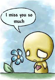 My Diary I Miss You