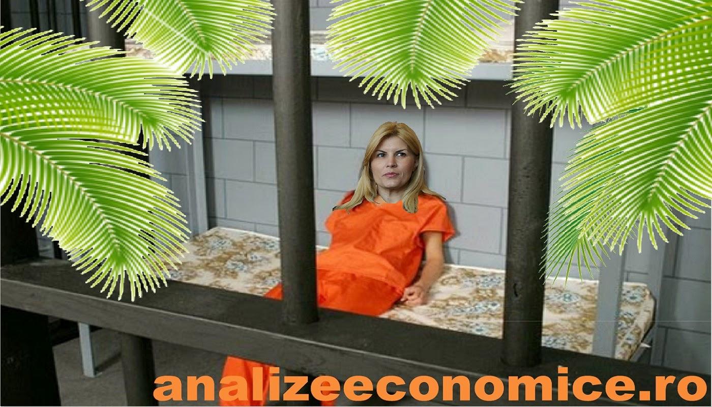 Adevăratul motiv al plasării în arest la domiciliu a Elenei Udrea.