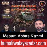 http://www.humaliwalayazadar.com/2014/10/mesum-abbas-kazmi-nohay-2013-to-2015.html