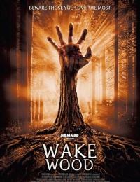 Wake Wood   Bmovies