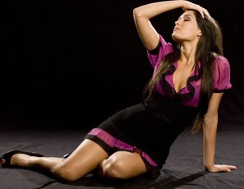 Wrestling All Stars Wwe Nikki Bella Hd Wallpapers 2012