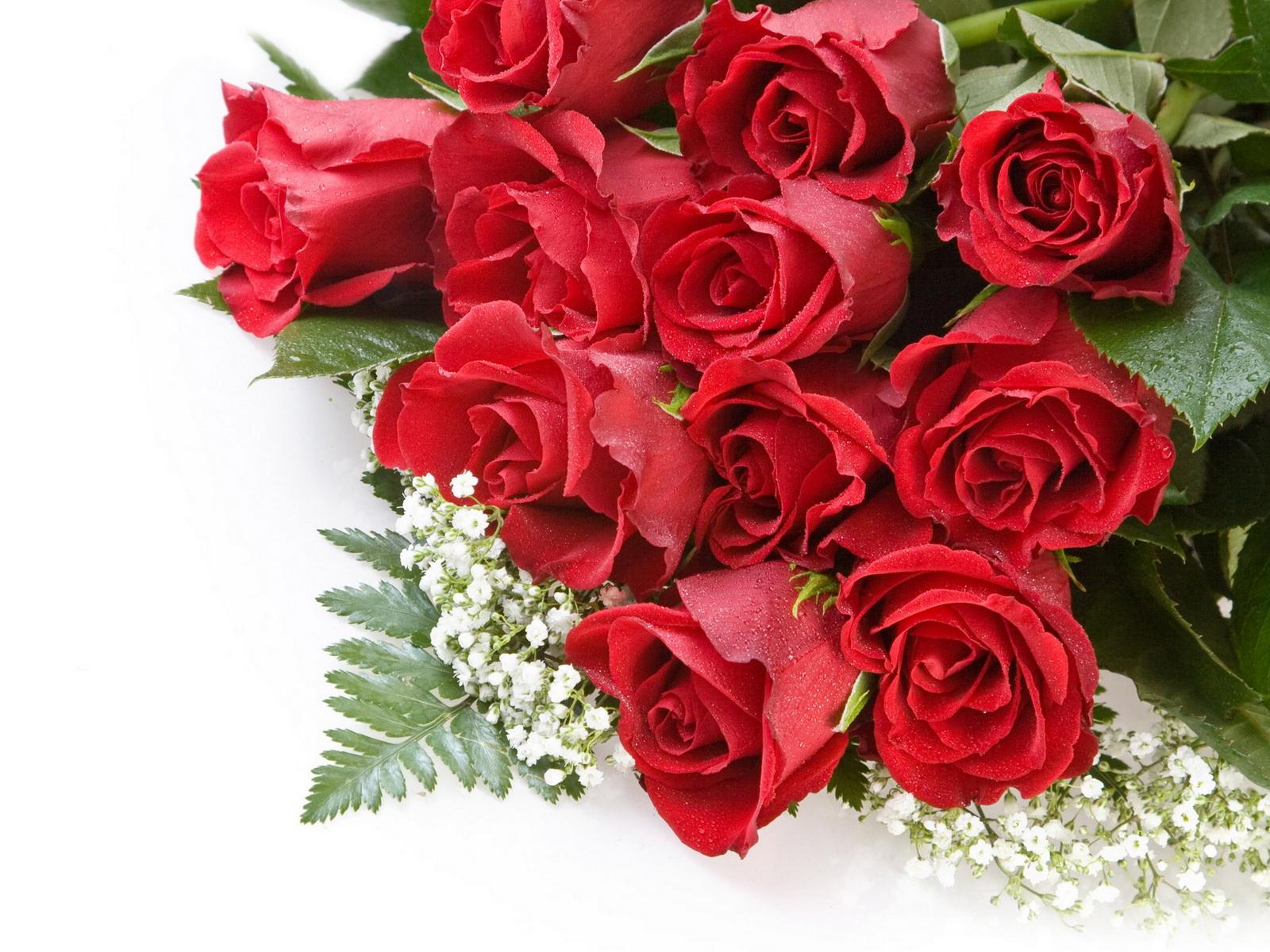 top roses flowers happy - photo #41
