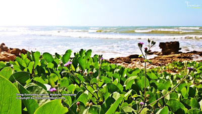 Pantai Siring Kemuning Madura