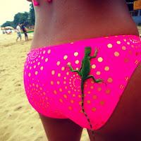 marbella escort pink bikini gecko