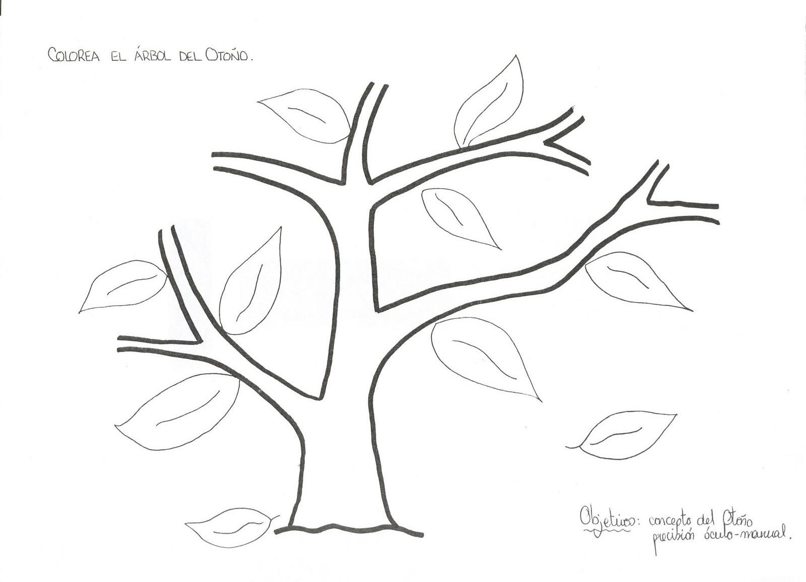 Dibujo De Arbol Sin Hojas Para Colorear Hearthtop