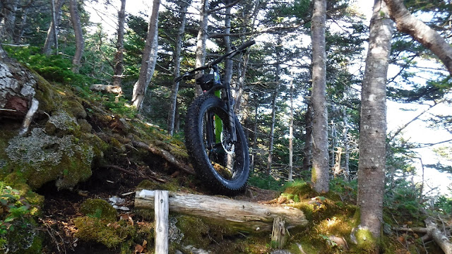 Exploring unfamiliar terrain with a Fat Bike.  Fatbike trail.