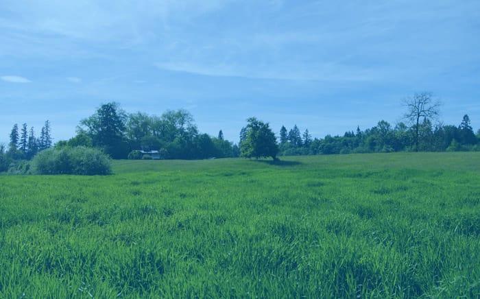 Hukum Agraria, Tanah, Asas dan Sumber Hukumnya