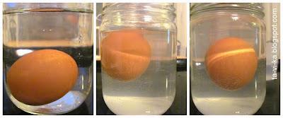 опыт с яйцом 1