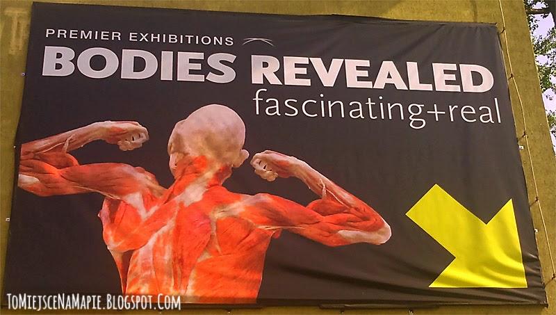 Bodies Revealed warszawa