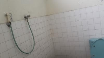 weird toilet position still