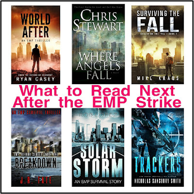 What would happen if an EMP strike hit America and took out all our electronics?  Could you survive? Find out how these friends, families, and strangers get along in this series of End of the World books to put on your To Be Read List.