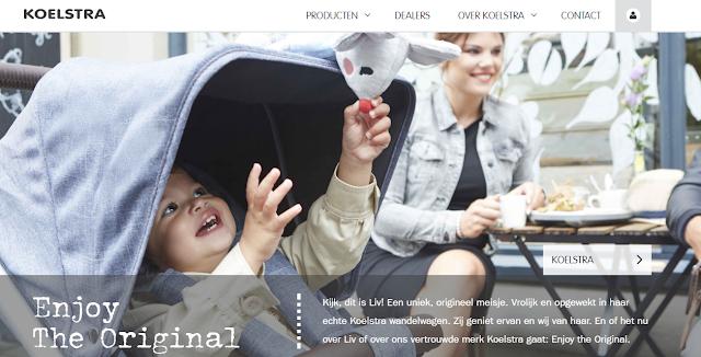Koelstra website