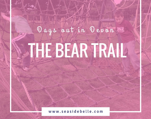 Days out in Devon: The Bear Trail