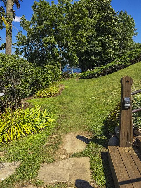 mowed grass trail in yard