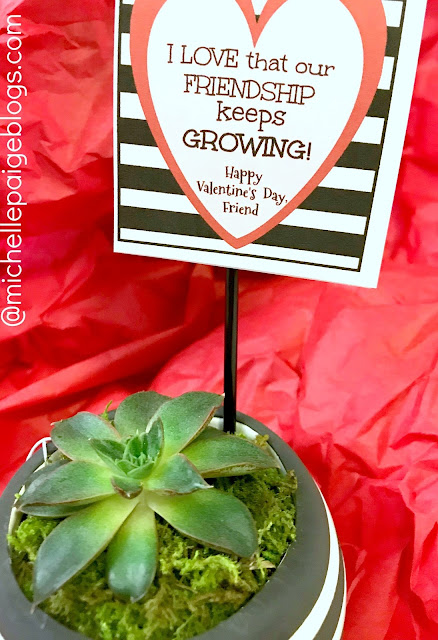 Succulent friendship valentine @michellepaigeblogs.com