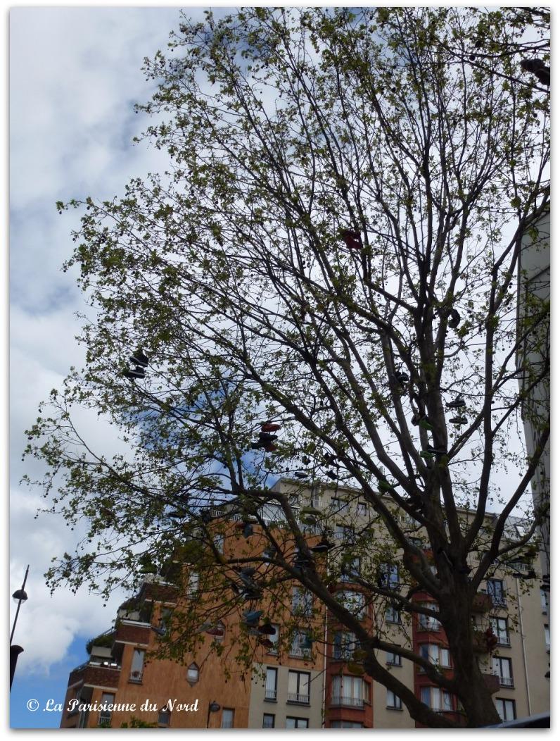 Quand tu rencontres un arbre dans la rue