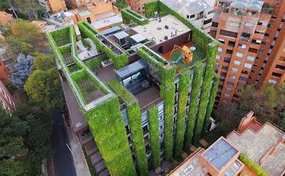 Căn hộ 11 tầng được 'bảo hộ' bởi cây xanh 1