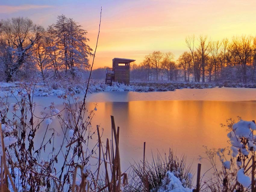 Nettetal, De Wittsee im Winter bei Sonnenuntergang