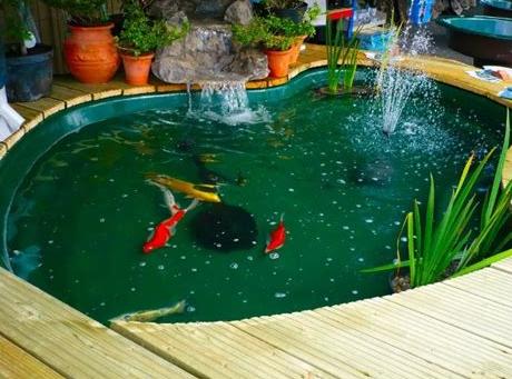 Kolam ikan dan taman berbentuk bulat