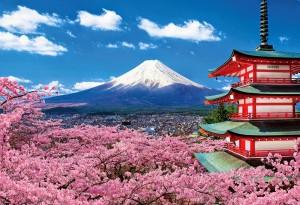 Những điều cần biết về du học Nhật Bản