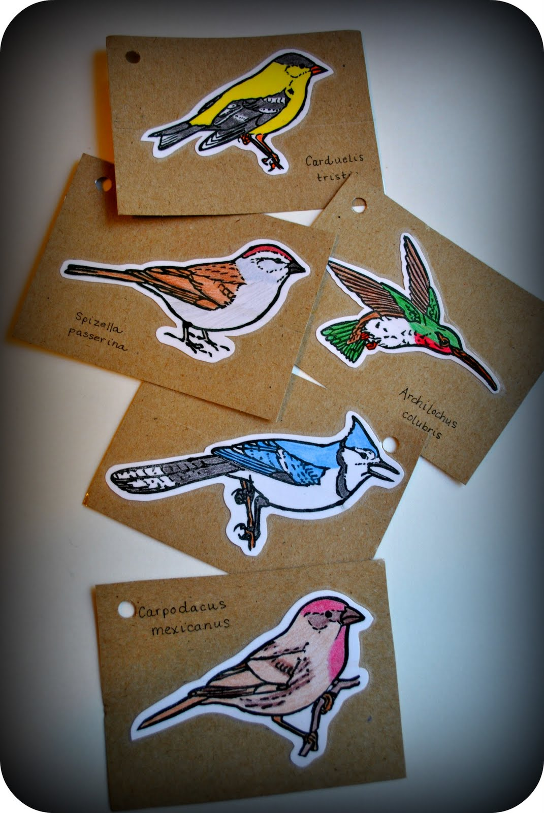 Rubber stamps for crafting - Hand Carved Bird Rubber Stamps Crafting With The Stars Audition