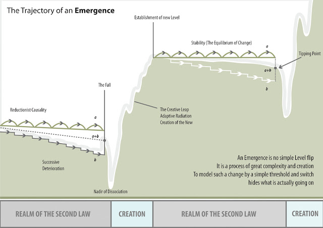 Philosophical Diagram: Trajectory of an Emergence