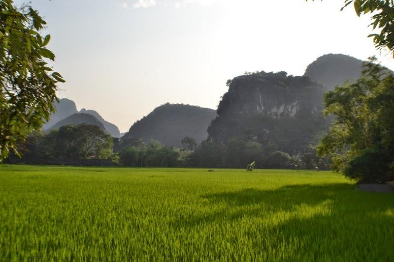 Hoa lu, unesco, vietnam