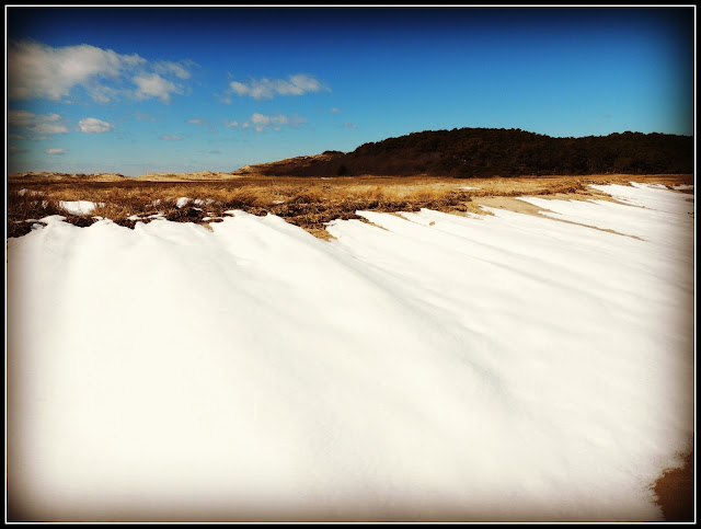 Great Island Trail: Nieve