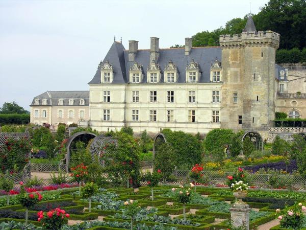 jardines del palacio de Villandry