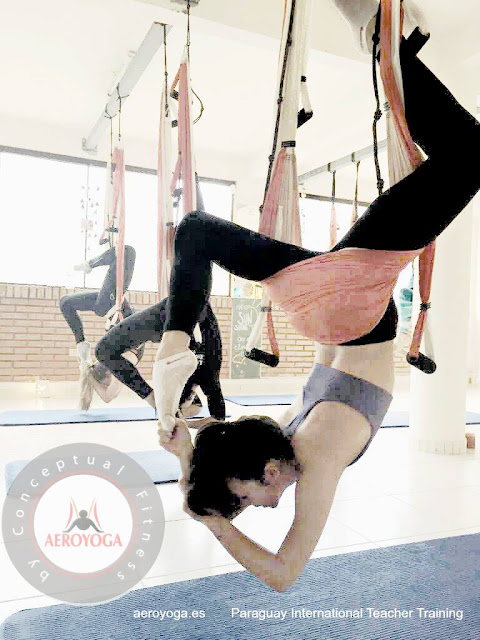 aerial yoga, yoga, aeroyoga, online, teacher training, air yoga, wellness, health, exercice, coaching