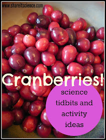 cranberries science and activities
